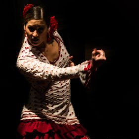 Flamenco Dance Master's Degree